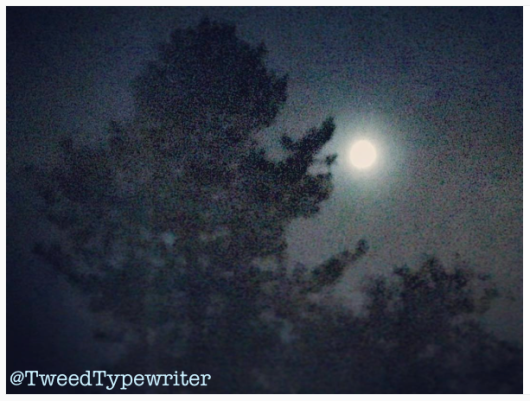 moon_edit